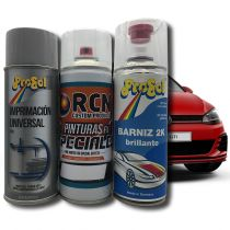 Kit Sprays Pintura Color de Serie Coche y Moto