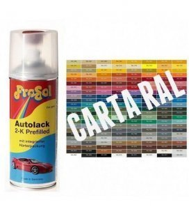 Spray 2K Pintura RAL MATE