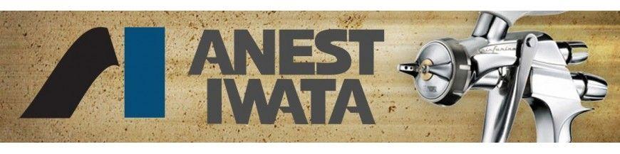 Pistolen Anest Iwata